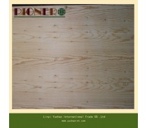 Hot Sell Wood Grain Fancy Plywood for Iraq Market