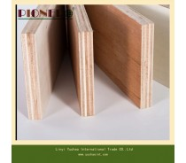 White Oak Plywood for Furniture with E0 Glue