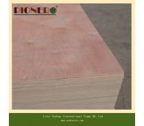 Commercial Plywood AAA Grade for Middle East Market