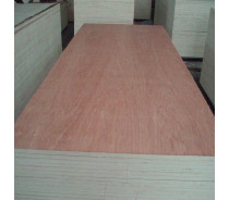 1220x2440mm 2-25mm poplar core bintangor plywood