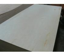 Best Prices2-25mm 4'*8' Poplar Core Birch Plywood