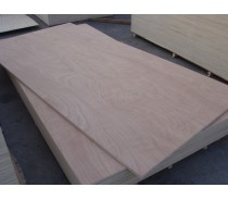 Hot sale Bintangor plywood from China Linyi