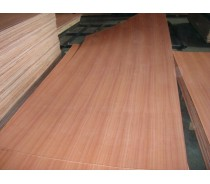 Sapele plywood with good quality