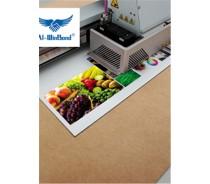 Al-WinBond digital printing ACM