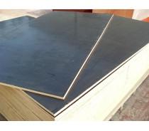 1220*2440mm poplar core film faced plywood