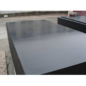 Good Price 18mm Poplar Core Black Film Faced Plywood