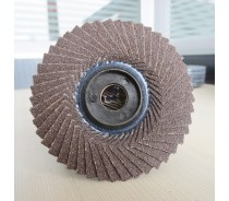 Calcined Flower Shap Polishing Flap Disc for Metal