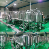 500L Customized Beer Brewery Equipment
