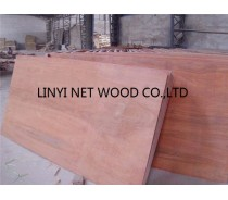 18mm bintangor plywood with two hot press
