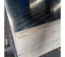 9mm 12mm 15mm 18mm 21mm Film Faced Shuttering Plywood