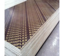 11 layer poplar wood plywood construction used