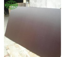 Brown Film faced plywood manufacturer in Linyi