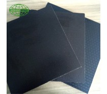 Anti-Slip film faced plywood from Greentrend