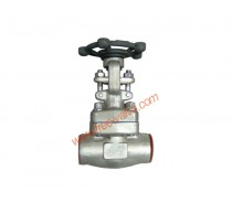 Forged Stainless Steel Globe valve  Class 800 Socket Welded