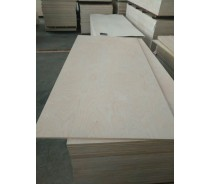 commercial plywood  with  FSC, CE, JAS certificate
