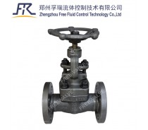 FRJ41Y RF Flanged Forged Steel A105 Globe Valve