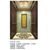 Asiafuji Passenger Elevator