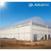 Tunnel 200 Micron Plastic Film Greenhouse