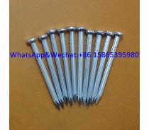 harden steel nails high tensile galvanized concrete nails