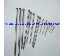 Q195 Common Wire Nails Wood Nails Manufacturer