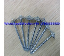 Umbrella Head Roofing Nails Corrugated Nails Galvanized