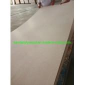 Cheap Decorative 3.6mm 12mm 18mm Fancy Veneered Plywood