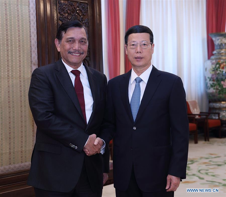 CHINA-INDONESIA-ZHANG GAOLI-LUHUT-MEETING (CN)